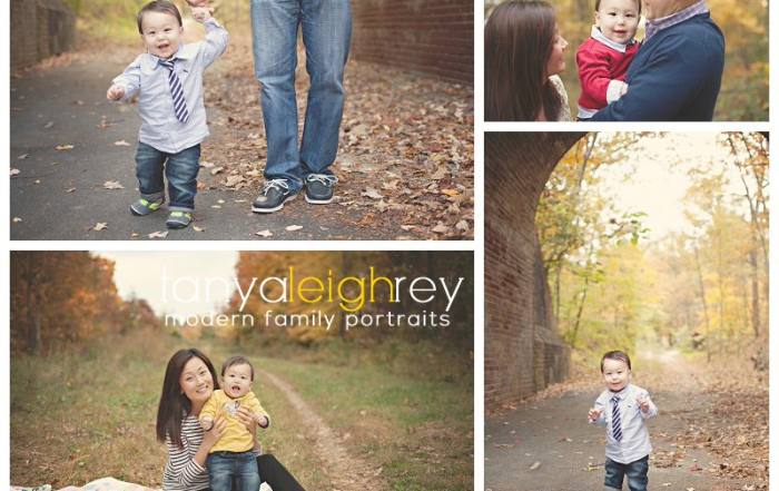 lorton va family photographer