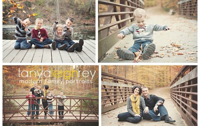 springfield va family photographer