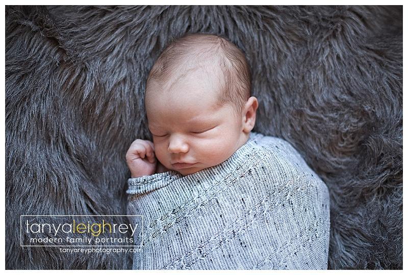 arlington-va-newborn-photographer