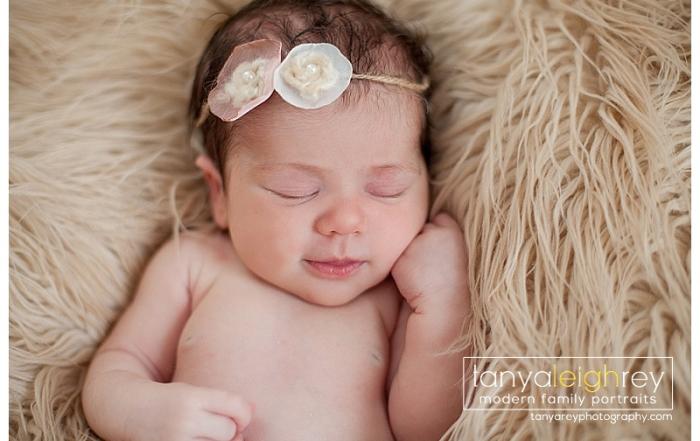 newborn session – alexandria va newborn photographer